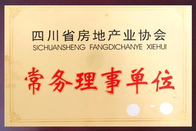 四川省房地产业常务理事单位